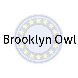 Brooklyn Owl